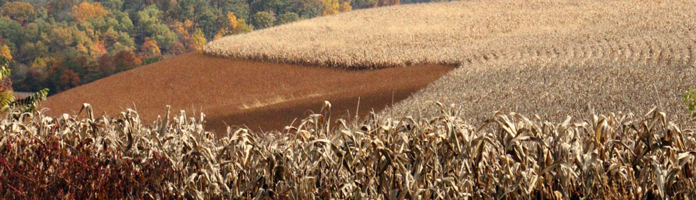 Heidelberg Township in the Fall