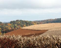 Fall in Heidelberg Township
