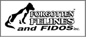Forgotten Felines & Fidos
