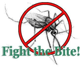 mosquito_edited2